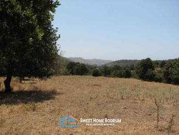 YALIKAVAK DAGBELEN YAKAKOY 12.700 m² LAND FOR SALE