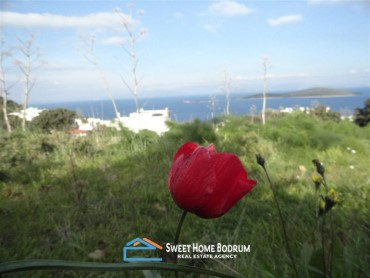 LAND PLOT FOR SALE IN GUNDOGAN, BODRUM WITH SEA VIEW